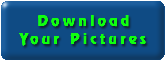 Download Pictures